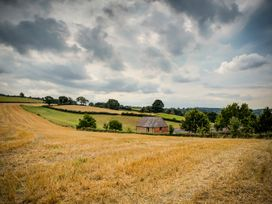Little Barn - Cotswolds - 988611 - thumbnail photo 32
