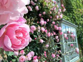 Benfield - Cotswolds - 988637 - thumbnail photo 3