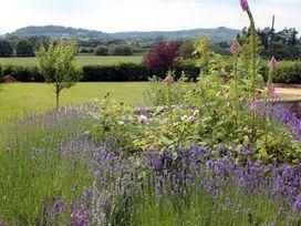 West Hatch Cottage - Dorset - 989004 - thumbnail photo 21