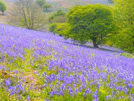 Sea Breeze - Isle of Wight & Hampshire - 989136 - thumbnail photo 21