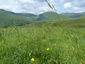 Howgill Cottage - Lake District - 990652 - thumbnail photo 12