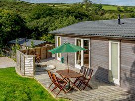 4 Hedgerows - Cornwall - 991427 - thumbnail photo 12