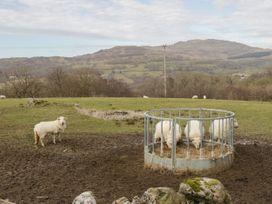 Brithgwm Canol - North Wales - 991591 - thumbnail photo 20