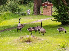 4 Lake View - Norfolk - 992214 - thumbnail photo 32