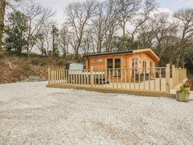 Little Orchard Lodge - Cornwall - 992937 - thumbnail photo 20