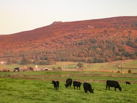 The Green - Yorkshire Dales - 993317 - thumbnail photo 17