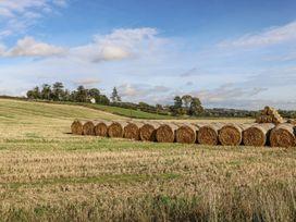 Bonjedward Mill Farm Cottage - Scottish Lowlands - 993485 - thumbnail photo 22