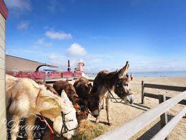 The Beach House - Dorset - 993993 - thumbnail photo 30