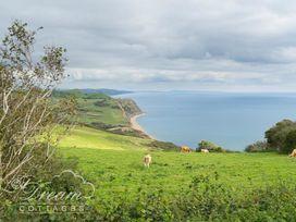 Burton Bay - Dorset - 994050 - thumbnail photo 24