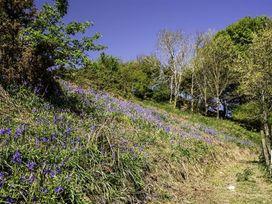 Leys At Valley View Farm - Devon - 994328 - thumbnail photo 24