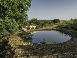 Leys At Valley View Farm - Devon - 994328 - thumbnail photo 28