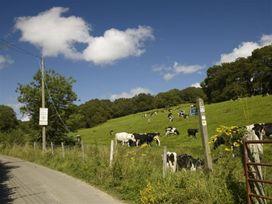 Leys At Valley View Farm - Devon - 994328 - thumbnail photo 39