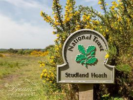 Studland Cottage - Dorset - 994689 - thumbnail photo 22