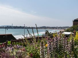Sunny Days - Dorset - 994696 - thumbnail photo 19