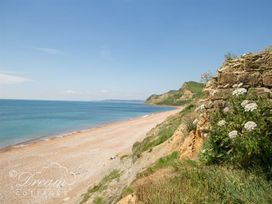 The Wave - Dorset - 994765 - thumbnail photo 25
