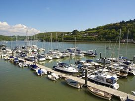 9 Dart Marina - Devon - 995189 - thumbnail photo 4