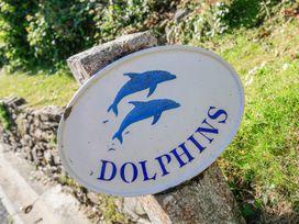 Dolphins - Devon - 995389 - thumbnail photo 2