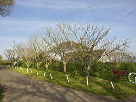 Seaway House - Devon - 995790 - thumbnail photo 33