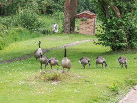 32 Lake View - Norfolk - 996426 - thumbnail photo 24