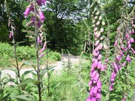 Quantock Hide - Somerset & Wiltshire - 997164 - thumbnail photo 24
