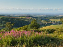 Quantock Hide - Somerset & Wiltshire - 997164 - thumbnail photo 26