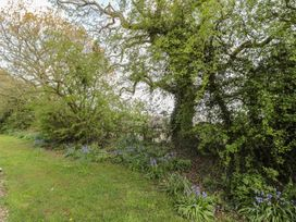 Robin Cottage - Northumberland - 997902 - thumbnail photo 26