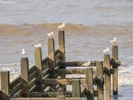 Sea View - Norfolk - 998050 - thumbnail photo 21