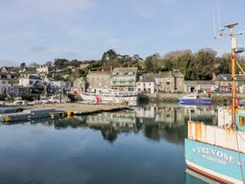 Kingfisher - Cornwall - 998313 - thumbnail photo 22
