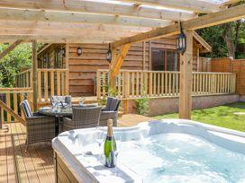 Elm Lodge - Somerset & Wiltshire - 998976 - thumbnail photo 1