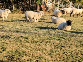 Taigh Chailean - Scottish Highlands - 999089 - thumbnail photo 20