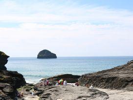 Salty Sea Dog - Cornwall - 999515 - thumbnail photo 30