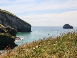 Salty Sea Dog - Cornwall - 999515 - thumbnail photo 31