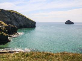 Salty Sea Dog - Cornwall - 999515 - thumbnail photo 32