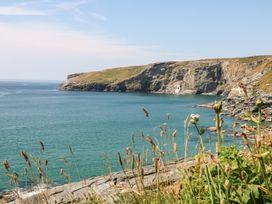 Salty Sea Dog - Cornwall - 999515 - thumbnail photo 33