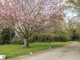 Heron Cottage - Northumberland - 999603 - thumbnail photo 24
