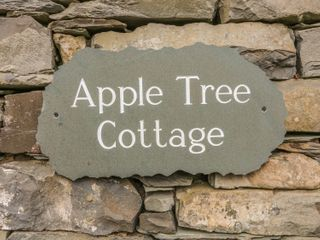 Apple Tree Cottage - 1000835 - photo 3