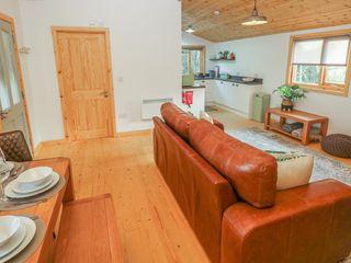 Fern Lodge - 1002023 - photo 9