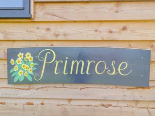 Primrose - 1003585 - photo 3