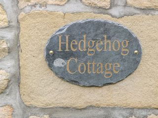 Hedgehog Cottage - 1005206 - photo 3