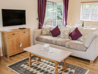 Alder River Lodge - 1005389 - photo 4