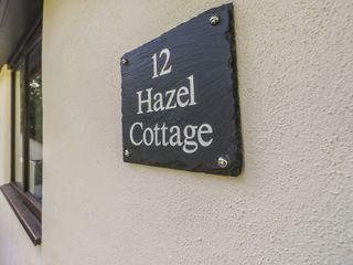 Hazel Cottage - 1007510 - photo 3