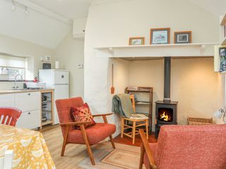 Ffrwd Cottage - 1008824 - photo 5