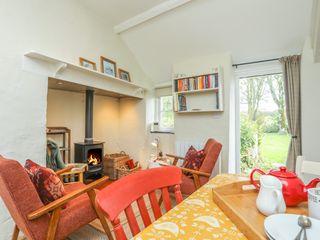Ffrwd Cottage - 1008824 - photo 7