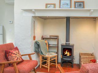 Ffrwd Cottage - 1008824 - photo 3
