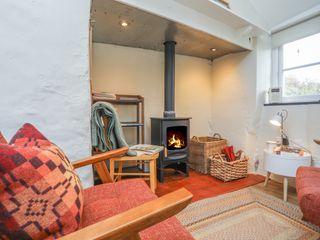 Ffrwd Cottage - 1008824 - photo 4