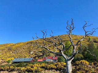 Appletree Croft - 1009456 - photo 3