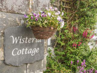 Wisteria Cottage - 1010651 - photo 2