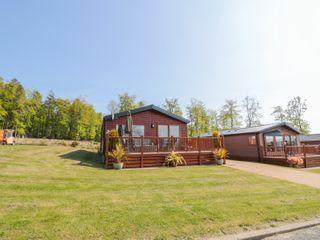 Cedar Lodge - 1011139 - photo 3