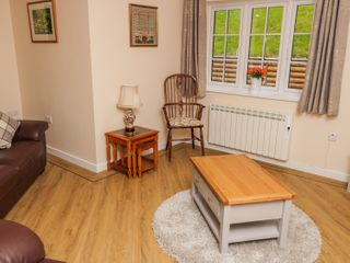 Ryedale Country Lodges - Hazel Lodge - 1011649 - photo 4