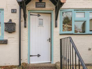 Lavender Cottage - 1014096 - photo 3